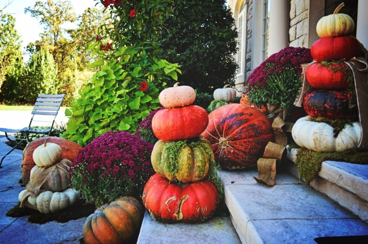 Pumpkin stacks are a great way to add height to your displays. Try to choose pumpkins with a flatter shape, and always try stacking them at the nursery before you purchase. You'd hate to drag all those pumpkins home, only to find they don't really work.