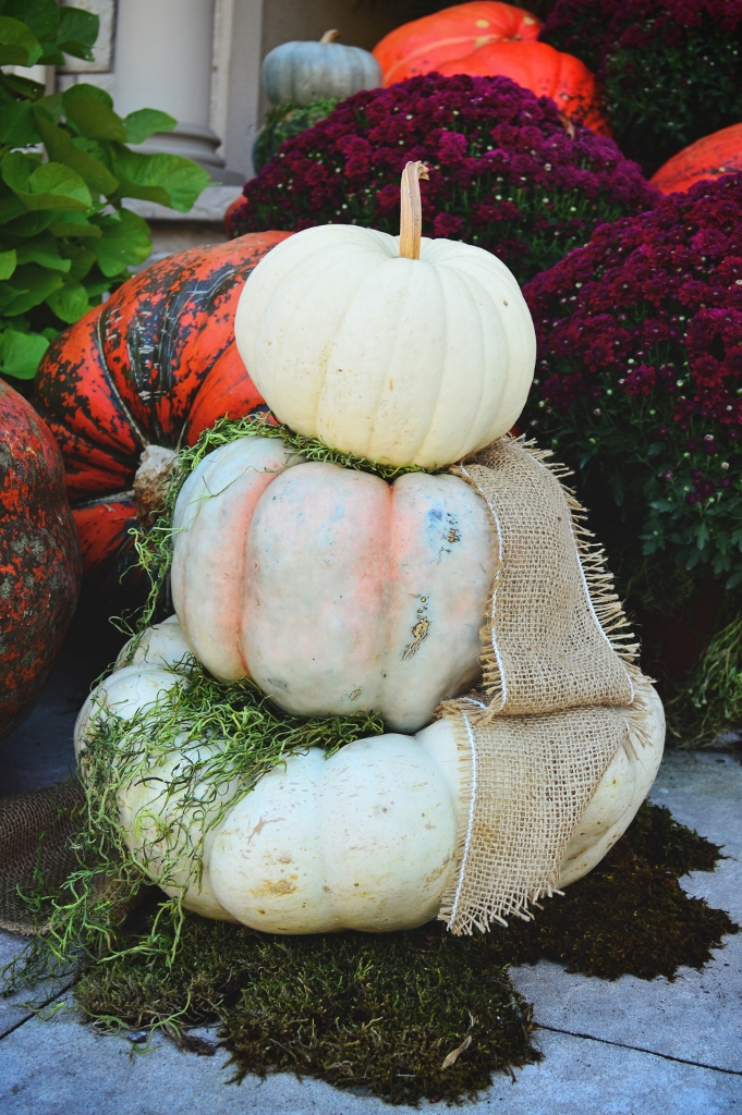 If you're unsure about color, pick a few pumpkins in various shades of the same basic color. A monochromatic theme always looks elegant, especially when paired with a brighter color (like the purple mums)